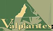 Valplantes - Plantes aromatiques et médicinales  biologiques du Valais